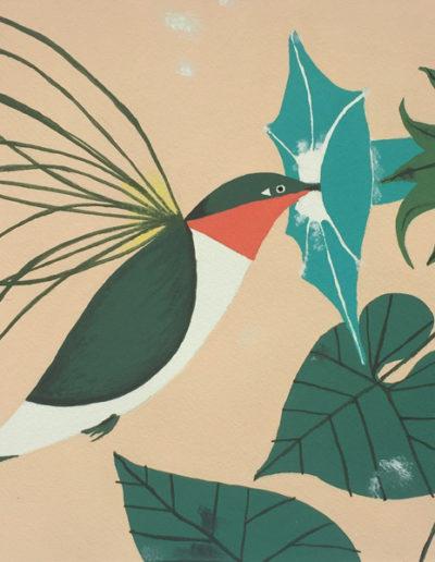 Gouaches-oiseaux