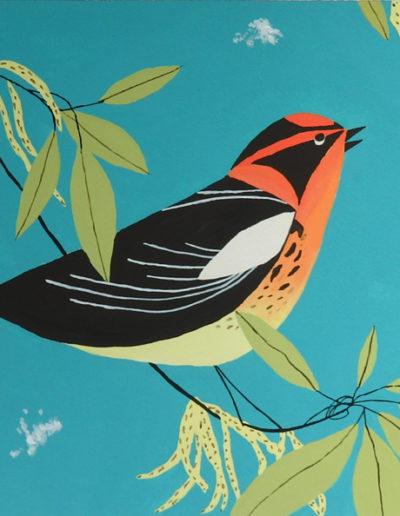 Gouaches-oiseaux2